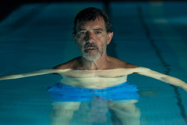 In Pain and Glory (2019), Salvador, a gay, middle-aged director played by Antonio Banderas, works his way through old memories in an attempt to come to terms with the path his life has taken