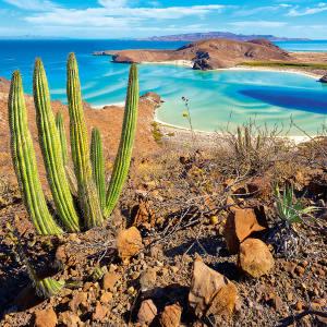 Balandra, one of Mexico's loveliest beaches, on the Sea of Cortés, near  La Paz