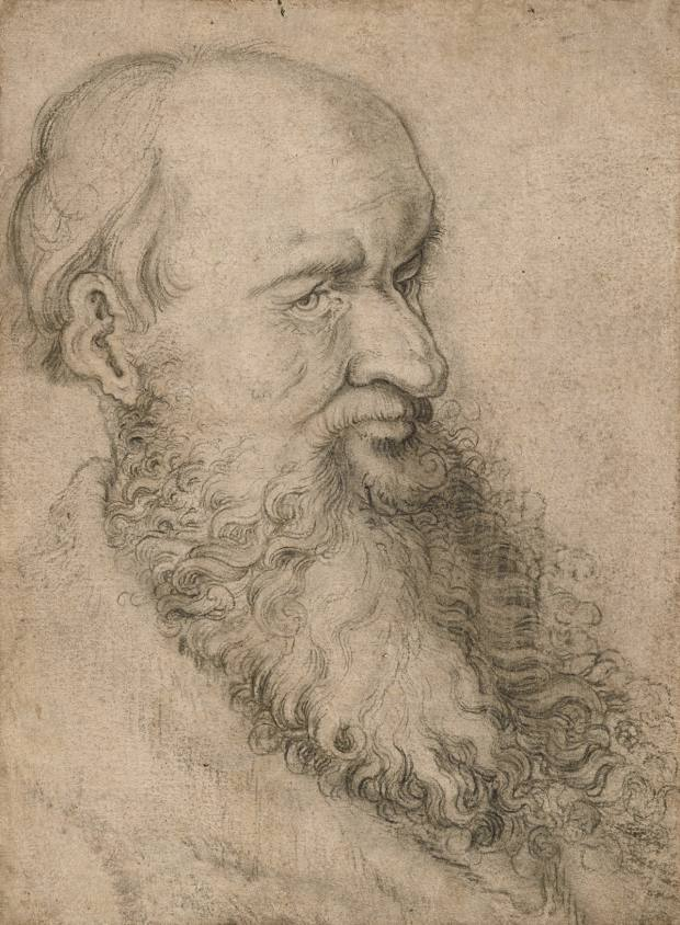 Hans Baldung Grien's Head of a Bearded Man, €500,000