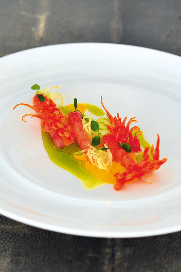 Raw red prawns are one of the highlights at the Lesic Dimitri Palace restaurant