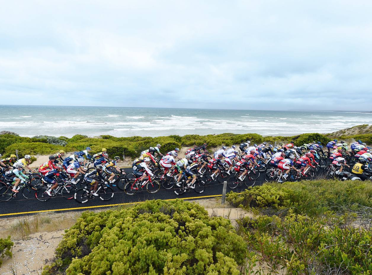 Cyclists in the 2015 Cadel Evans Great Ocean Road Race