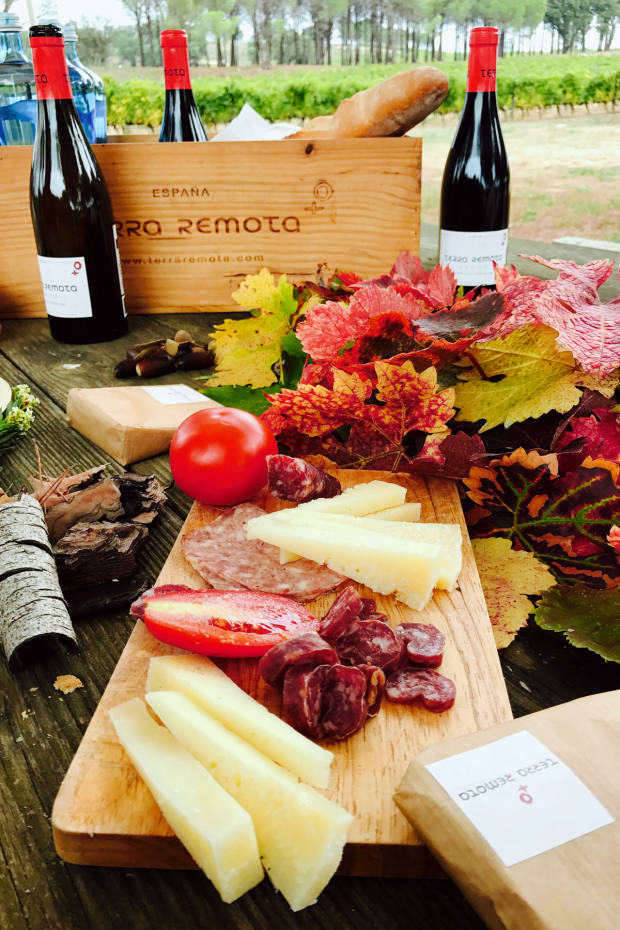 The Terra Remota picnic features delicious charcuterie, cheeses and the vineyard's gutsy red Camino wine