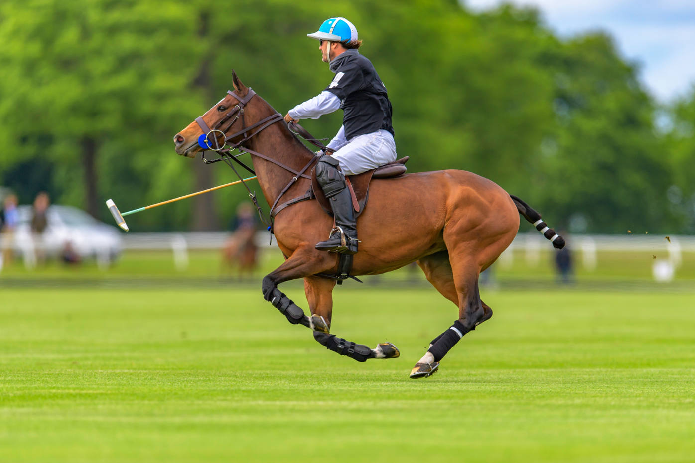 The England National Polo Team was victorious at last year's International Day