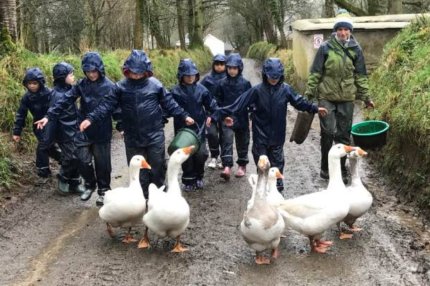 The children help to care for animals on a working farm