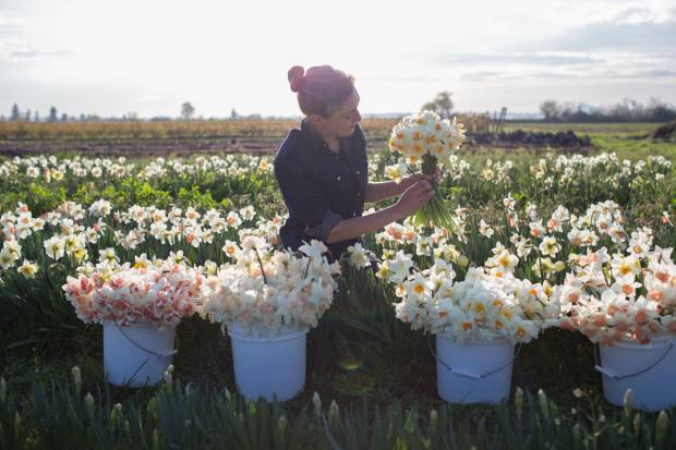 Erin Benzakein on her Washington State farm, Floret