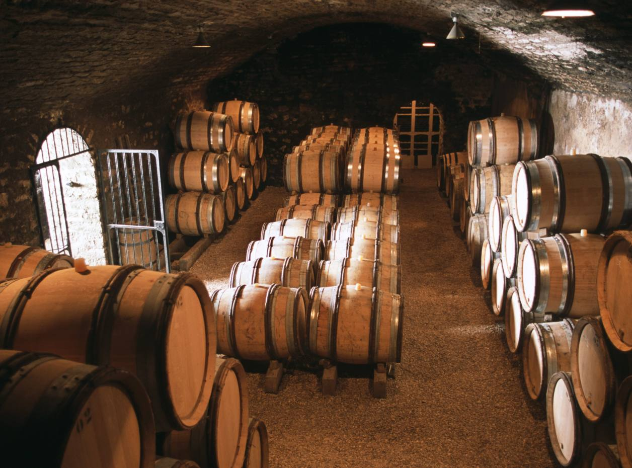 Montrachet wine being aged on the Domaine des Comtes Lafon estate