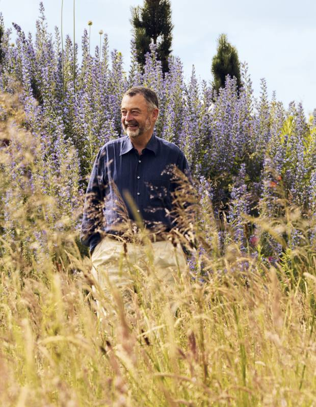 Clive Farrell in his Dorset garden, which he has planted and landscaped to attract native butterflies.