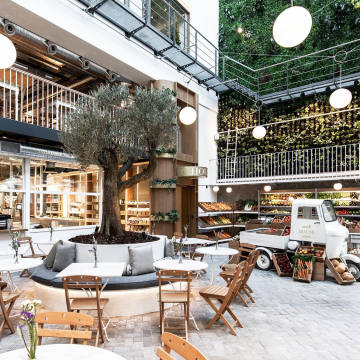 A 200-year-old olive tree forms the centrepiece of Ergon House Athens