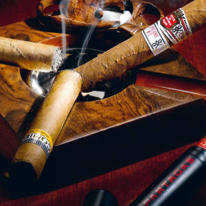 Clockwise from below left: Romeo Short Churchill, £13.10. Hoyo Epicure No 2, £13.40. Partagás Serie D No 4, £13.40. Cohiba Robusto, £20.10. See text for stockists.