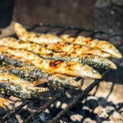 Grilled sardines at Porto's Festa de São João