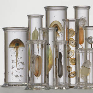 Cabinet of Curiosities by Danish glassblower Steffen Dam, £48,000 from Joanna Bird Contemporary Collections
