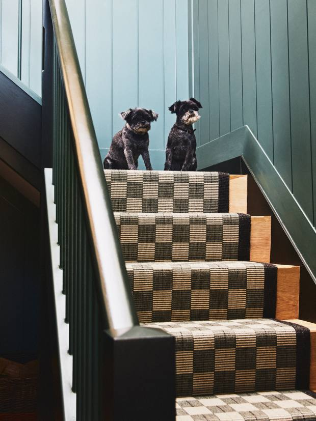 Arthur and Rudi, two of the couple's three dogs, onthestaircase – the runner is by Fleetwood Fox