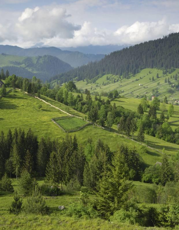 The Carpathian Mountains.
