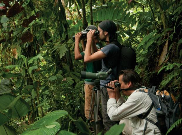 One of Mashpi Lodge's nature tours, Ecuador