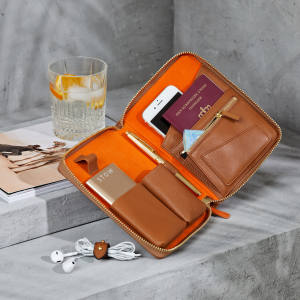 Mini First Class Tech Case, £305