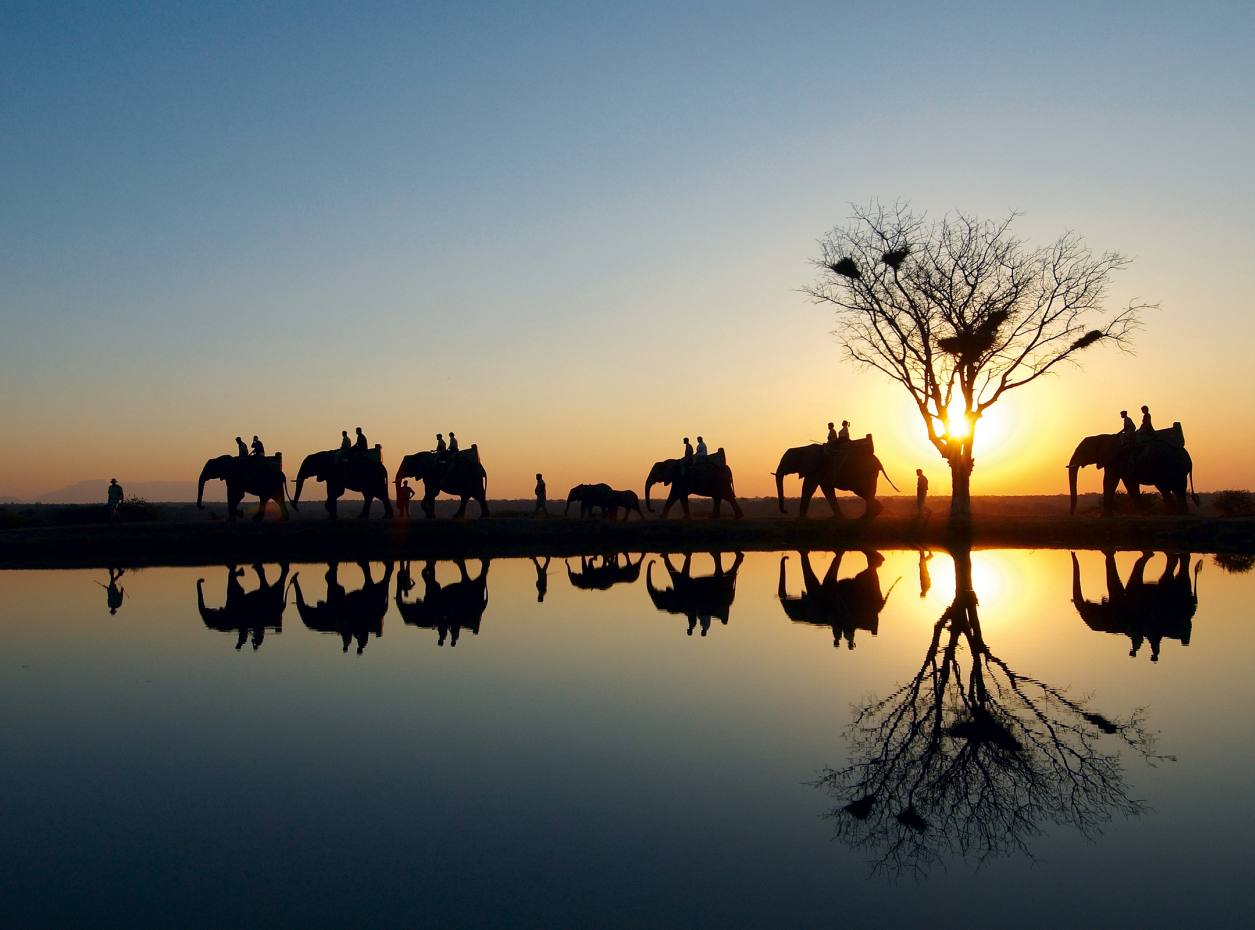 Elephants are the main attraction at Camp Jabulani, where the guests can enjoy tranquil rides at sunset.
