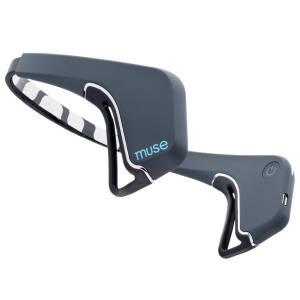 Muse headband, £250
