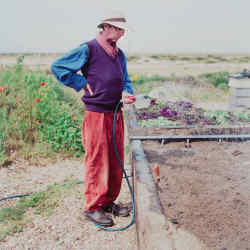 Derek Jarman waters his garden at Prospect Cottage, Dungeness