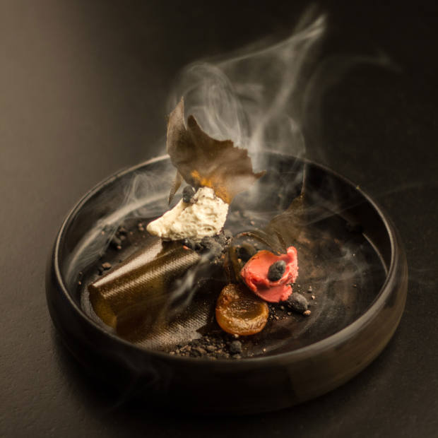 Chocolate, plum and chicory dessert with hazelnuts and charcoal