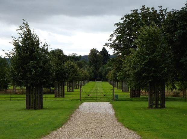 A formal lime avenue by George Carter at a Suffolk estate.