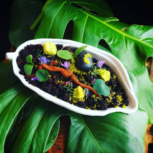 Welcome to the Rain Forest pudding made of Asháninka chocolate, coffee, vanilla, pistachio, macadamia nut and sugar cane
