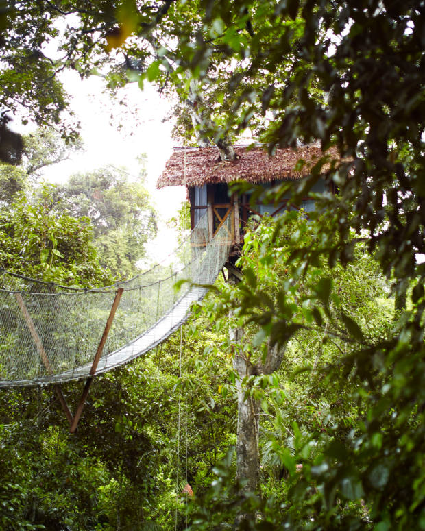 The chance to stay in a private treehouse in the Amazon is one of the experiences offered by travel club Prior