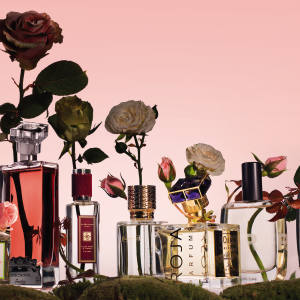 From left: Maison Francis Kurkdjian A la Rose, £145 for 70ml EDP. Guerlain French Kiss, £160 for 75ml EDP. Jo Malone Tudor Rose & Amber, £42 for 30ml EDC. Ex Nihilo Rose Hubris, £150 for 50ml EDP. Roja Parfums A Goodnight Kiss, £1,250 for 100ml parfum. S-Perfume 100% Love, £98 for 50ml EDP. Dear Rose I Love My Man, £105 for 100ml EDP