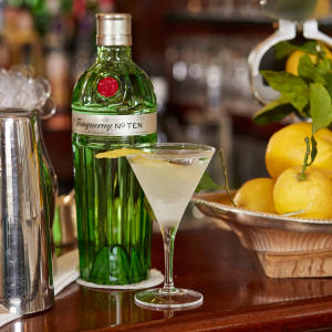 Tanqueray No Ten will feature in the cocktails on the journey