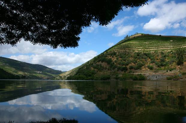 Lunch on one of the days will overlook the River Douro, at DOC restaurant