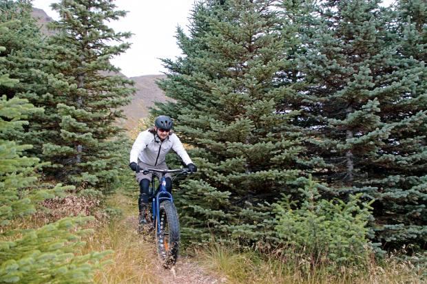 Racingdownhill through theSkardsdal pine forest