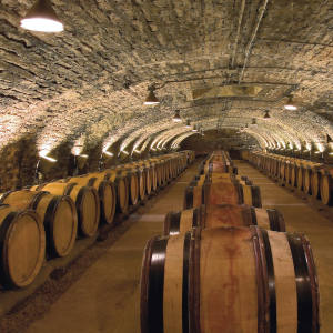 A third fewer barrels of Burgundy will be offered this year than last (589 vs 828), so bidding on the Hospices de Beaune auction is bound to be brisk