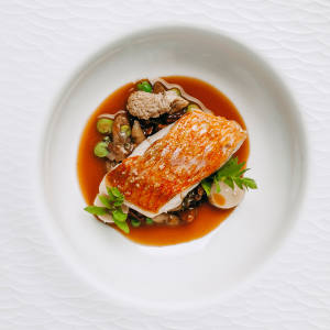 Rockfish fricassé with a stirfry of chanterelles, broad beans, marrow and clams