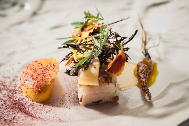 Ibérian pork jowl with carrots and bitter orange – an example of Ceia's dazzling cuisine