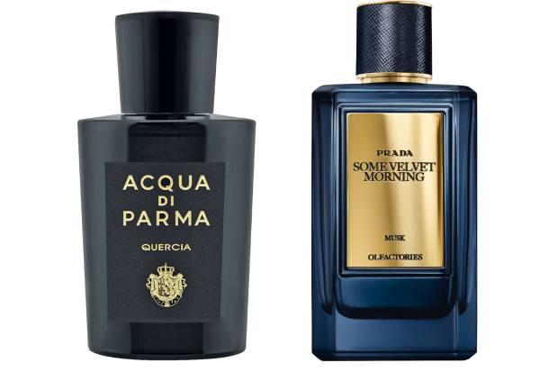 Acqua di Parma Quercia, £197 (100ml). Prada Some Velvet Morning, £225 (100ml), selfridges.com
