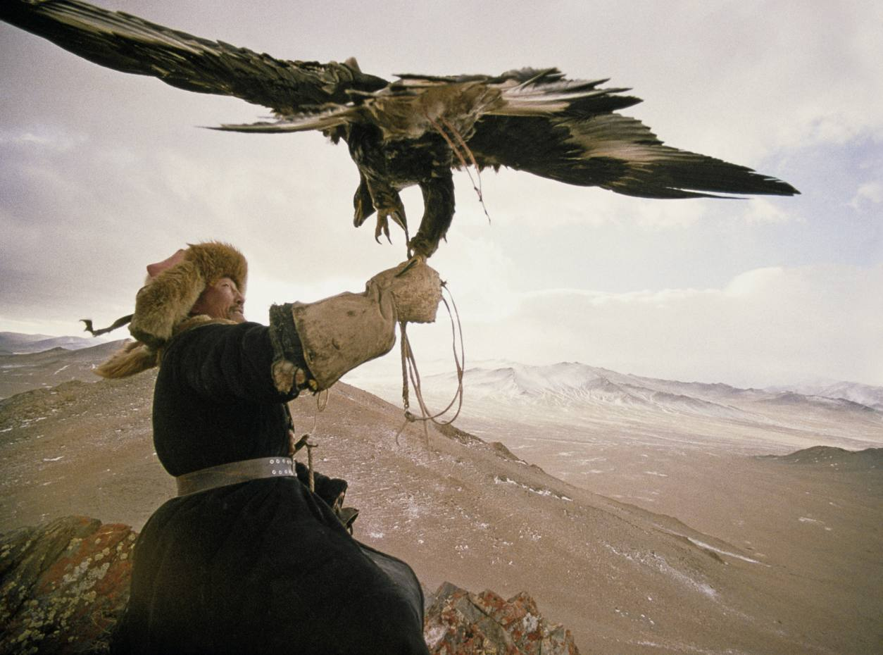 A Kazakh man supports his trained golden eagle, which hunters catch as young eaglets and raise by hand.