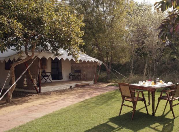 Sher Bagh Tented Camp, Ranthambore National Park, Rajasthan