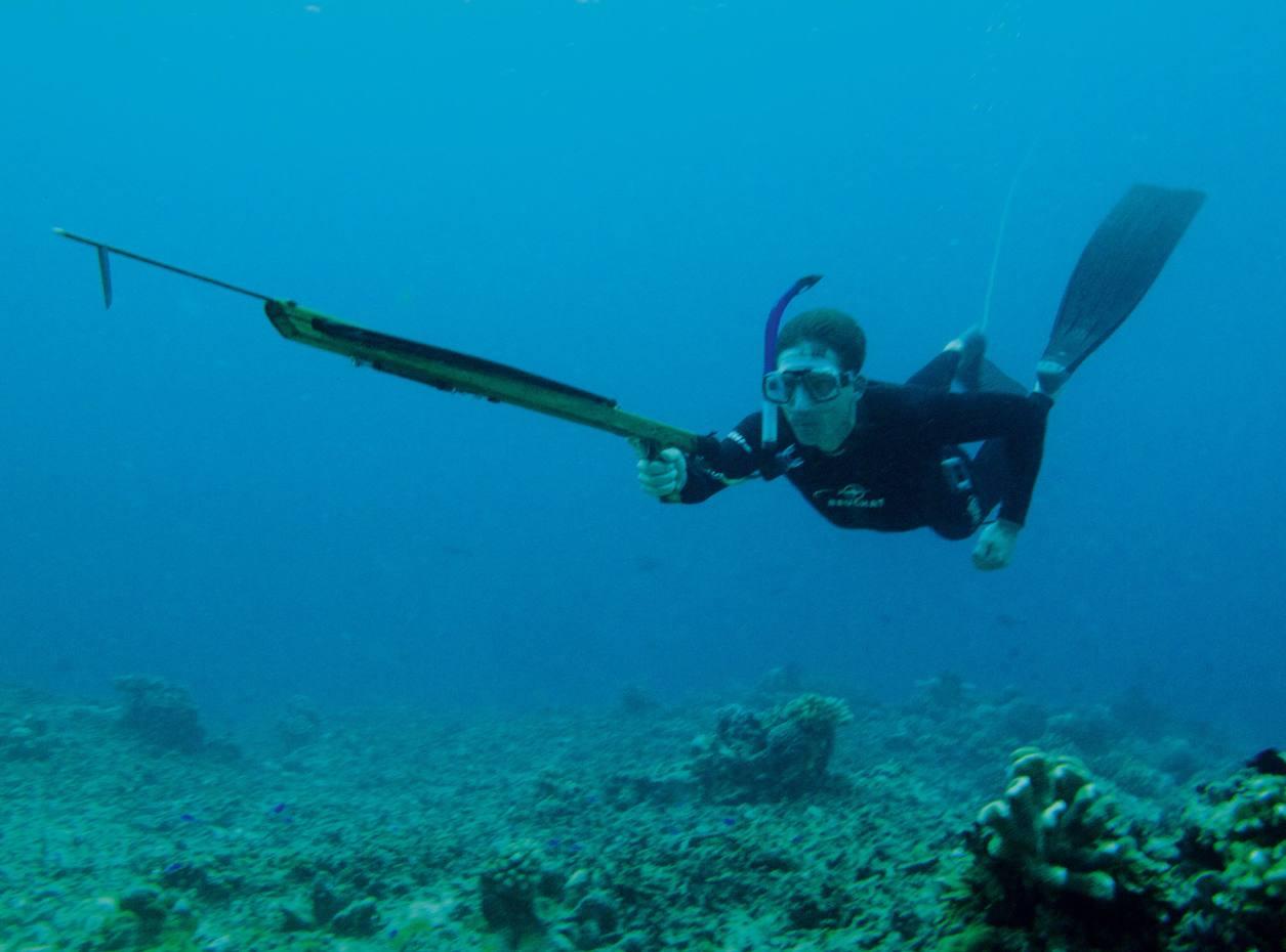 Tarquin Cooper freediving to catch his prey.