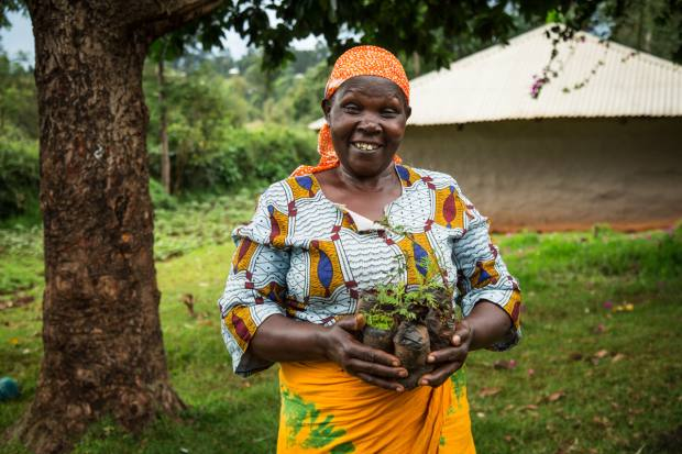 A farmer holding saplings at a Treedom project in Kenya
