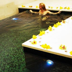 A private pool in the Kami Spa.
