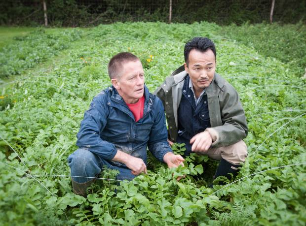 Ishii and Robin Williams in a field of daikon radish at Nama Yasai farm in East Sussex
