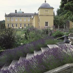 The summer garden at Castle Hill, Devon, created by Xa Tollemache