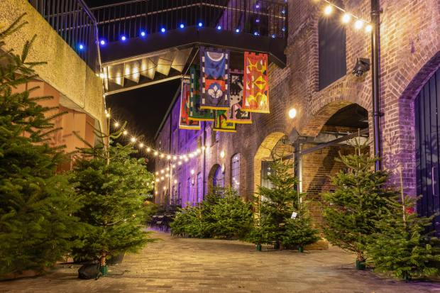 Kiosk N1C will upcycle Christmas trees into a pine-infused gin