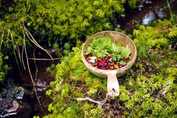 Foraging berries and greens for Sweden's The Edible Country initiative
