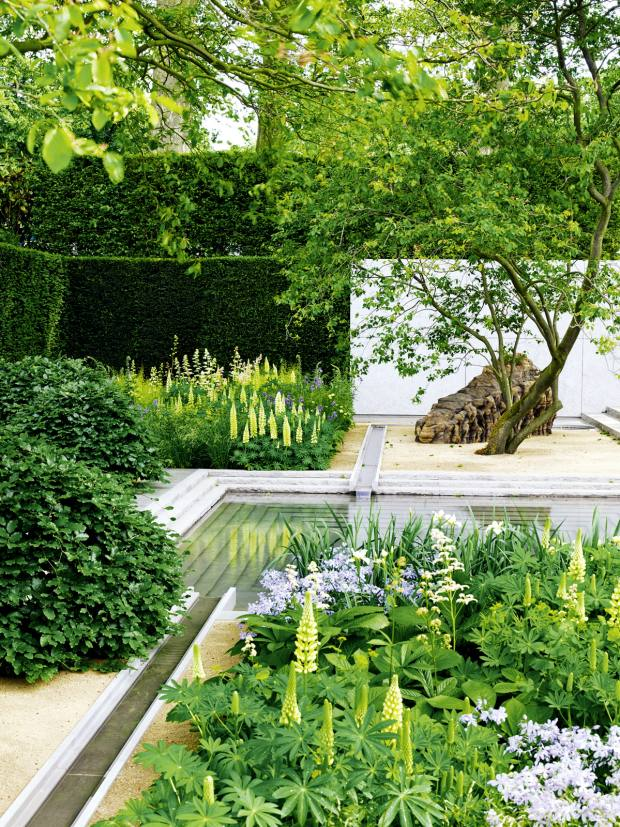Giubbilei's design also won an RHS gold medal at the Chelsea Flower Show in 2014
