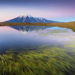 The volcanoes the Kamchatka Peninsula in the far east of Russia, to be explored in a Natural World Safaris' expedition in August
