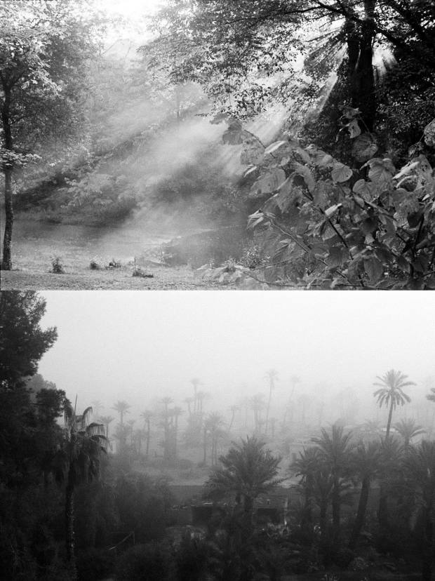 From top: Westchester, NY and Marrakech Sunrise, both by Christine Alaoui
