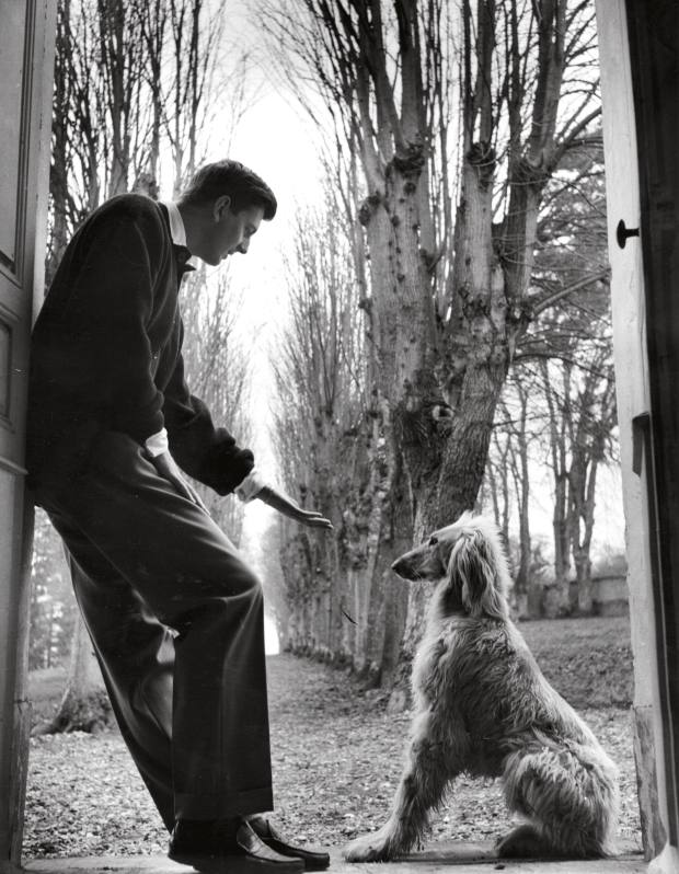 Hubert de Givenchy with his afghan hound