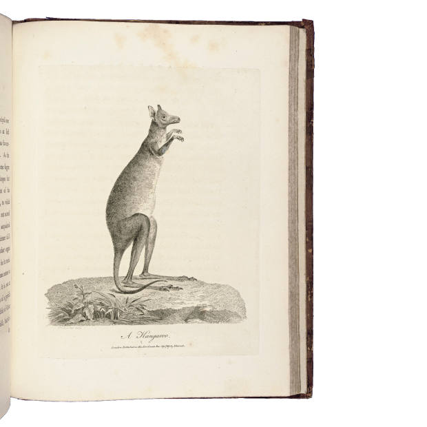 John White's Journal of a Voyage to New South Wales, 1790, sold for $2,000 at Christie's