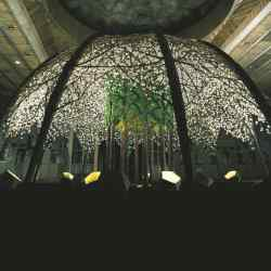 Ost's orchid canopy for the 60th birthday of King Baudouin of Belgium; prices for projects range from $1,000 to over $1m