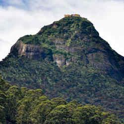 The conical form of Adam's Peak